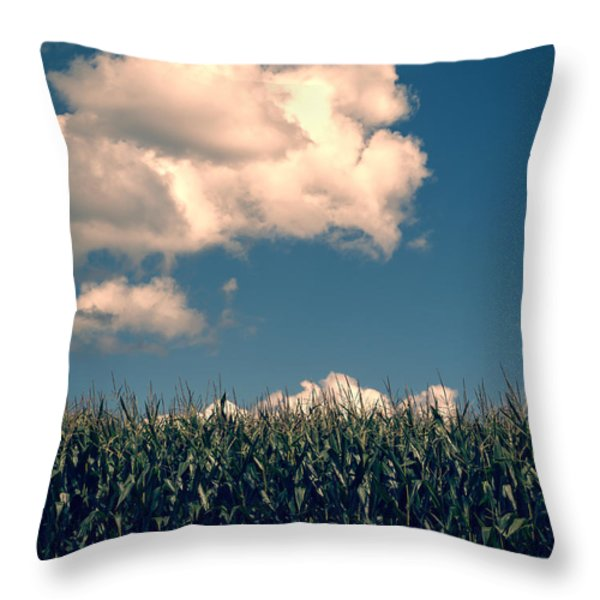 Vermont Cornfield Throw Pillow by Edward Fielding