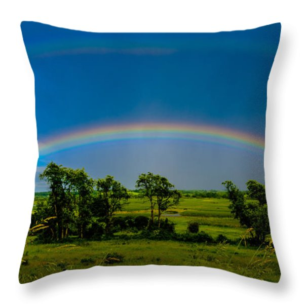 Vernon Marsh Double Rainbow Throw Pillow by Randy Scherkenbach