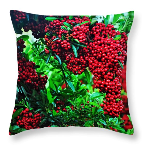 Very Berry Throw Pillow by Kaye Menner