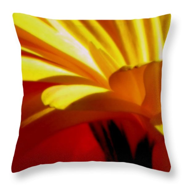 Vibrance  Throw Pillow by KAREN WILES