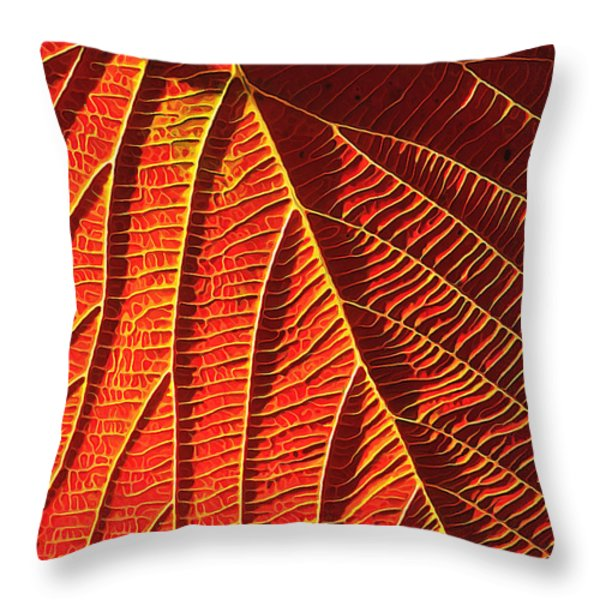 Vibrant Viburnum Throw Pillow by Bill Caldwell -        ABeautifulSky Photography