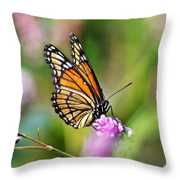 Viceroy Butterfly Throw Pillow by Christina Rollo