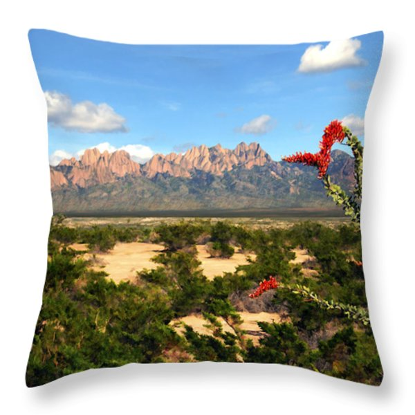 View From Roadrunner Throw Pillow by Kurt Van Wagner