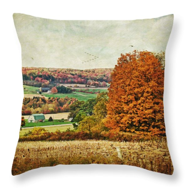 View From The Hill... Throw Pillow by Lianne Schneider