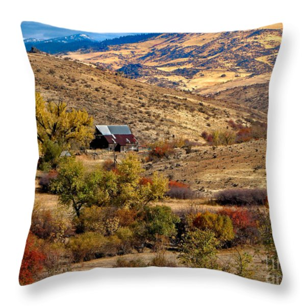 Viewing the Old Barn Throw Pillow by Robert Bales