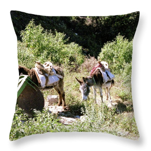 Village Transportation Throw Pillow by Michael Peychich