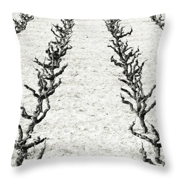 Vines Throw Pillow by Frank Tschakert