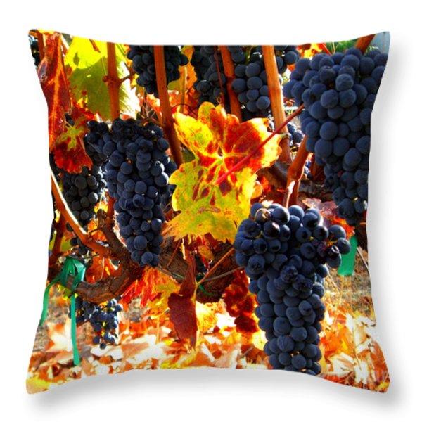 Vineyard 8 Throw Pillow by Xueling Zou