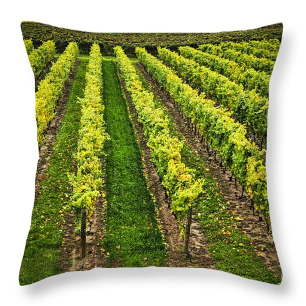 Vineyard Throw Pillow by Elena Elisseeva