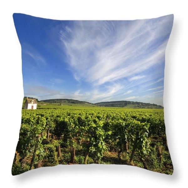 Vineyard hut. vineyard. Cote de Beaune. Burgundy. France. Europe Throw Pillow by BERNARD JAUBERT