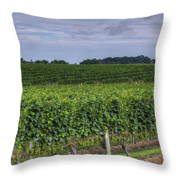 Vineyard Rows Throw Pillow by Steve Gravano