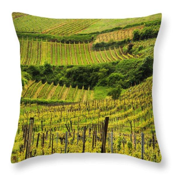 Vineyards Above Ammerschwihr France Throw Pillow by Greg Matchick