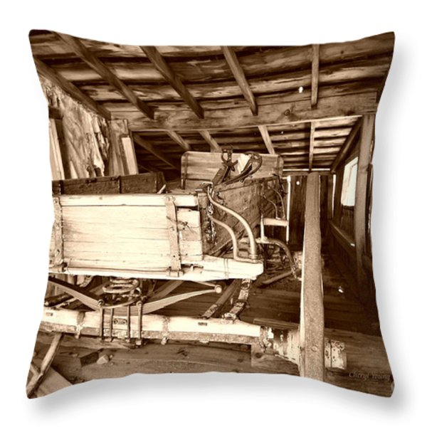 Vintage Barn Finds Throw Pillow by Cheryl Young