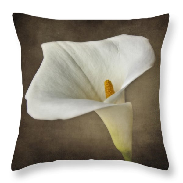 Vintage Calla Palustris Throw Pillow by Erik Brede