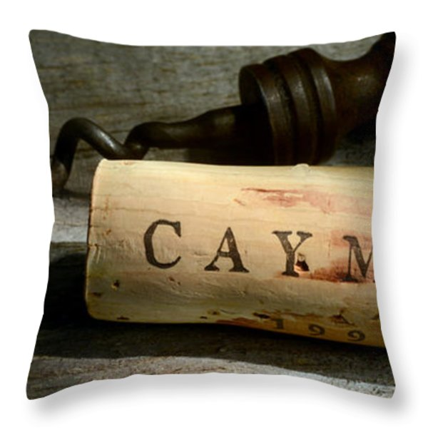 Vintage Camus Throw Pillow by Jon Neidert