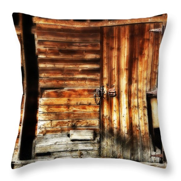 Vintage Dream Throw Pillow by Marilyn Hunt