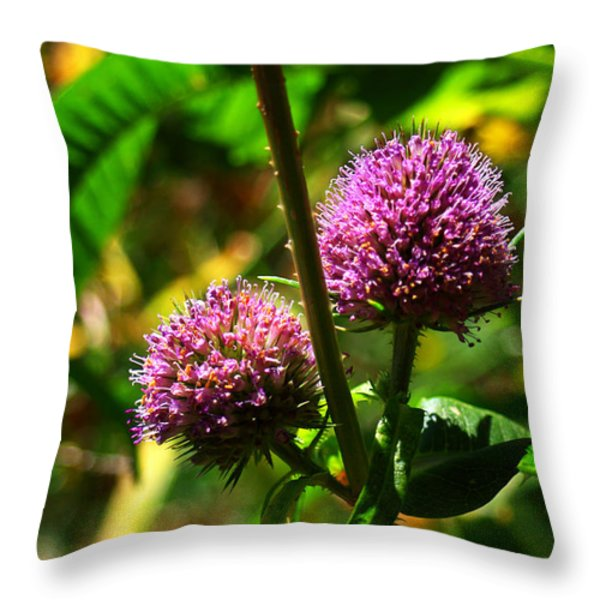 Violet Thistle Throw Pillow by Felix Padrosa