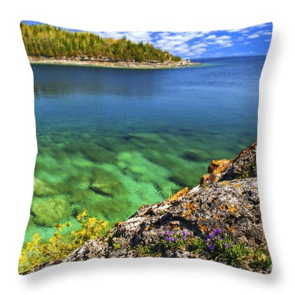 Violets at Georgian Bay Throw Pillow by Elena Elisseeva