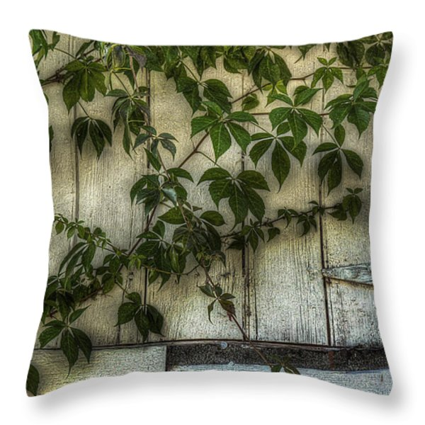 Virginia Creeper Throw Pillow by William Fields