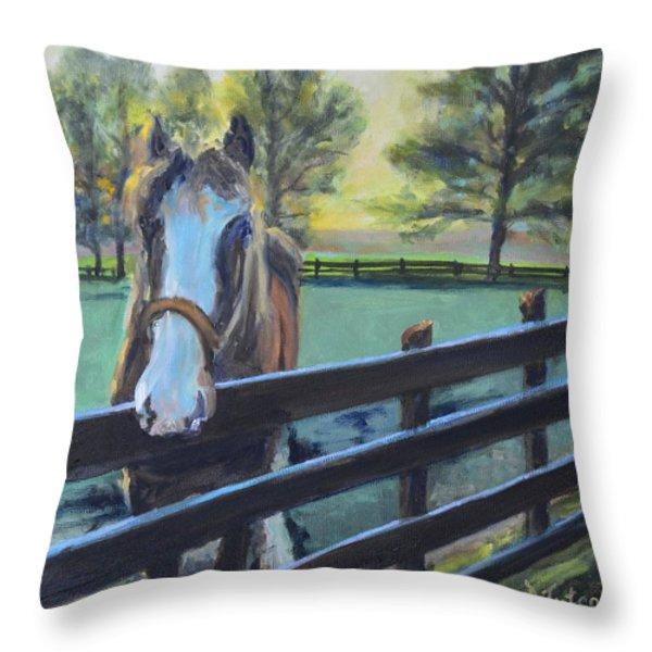Virginia Horse Farm Morning Throw Pillow by Donna Tuten