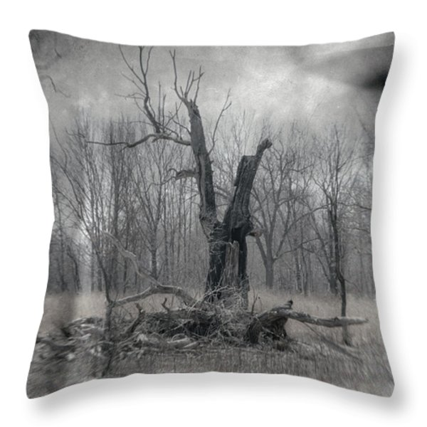 Visitor In The Woods Throw Pillow by Jim Shackett