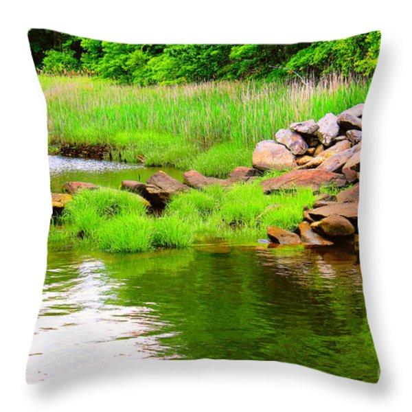 Visual Stillness Throw Pillow by Judy Palkimas