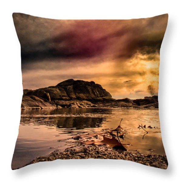 Vortex Throw Pillow by Bob Orsillo