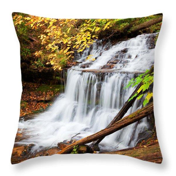 Wagner Falls In Autumn Throw Pillow by Craig Sterken