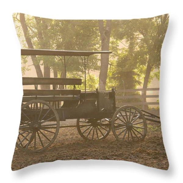 Wagon - Abe's Buggie Throw Pillow by Mike Savad