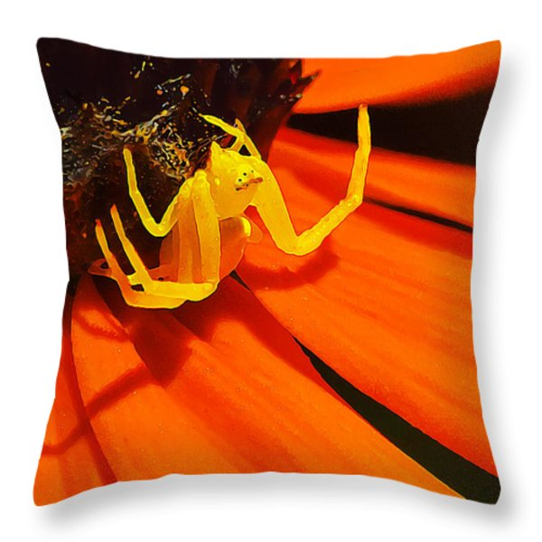 Waiting... Throw Pillow by Bill Caldwell -        ABeautifulSky Photography