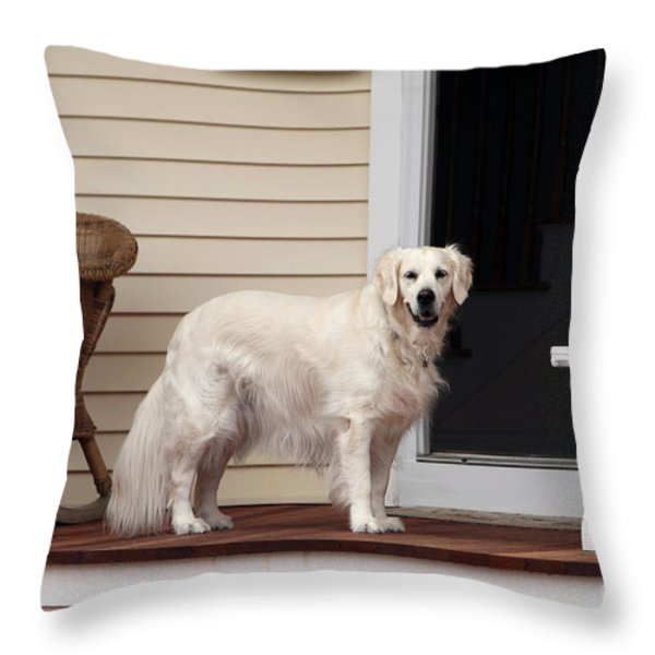 Waiting By The Door For You Throw Pillow by John Rizzuto