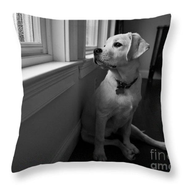 Waiting Throw Pillow by Diane Diederich