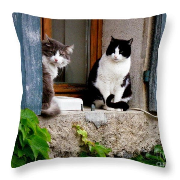 Waiting For Dinner Throw Pillow by Lainie Wrightson
