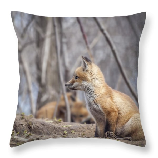 Waiting for Mom Throw Pillow by Thomas Young