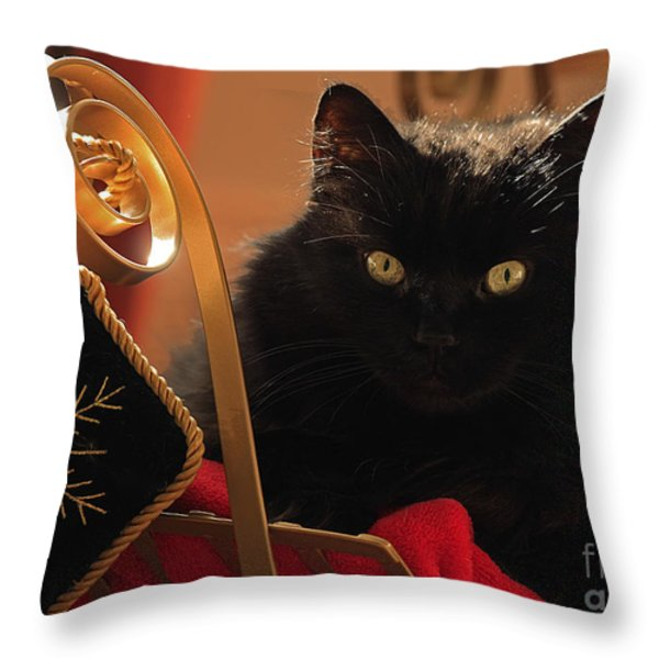 Waiting For Santa To Arrive Throw Pillow by Inspired Nature Photography By Shelley Myke