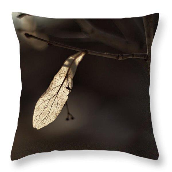 Waiting For Spring Throw Pillow by Jakub Sisak
