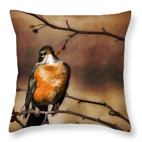 Waiting For Spring Throw Pillow by Jordan Blackstone
