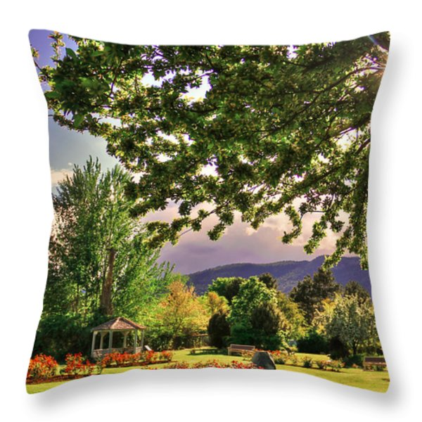 Waiting For The Roses To Bloom Throw Pillow by Eti Reid