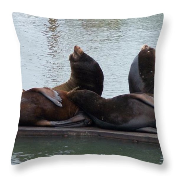 Waiting For The Sun Throw Pillow by  Chalet Roome- Rigdon