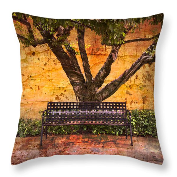 Waiting for You Throw Pillow by Debra and Dave Vanderlaan