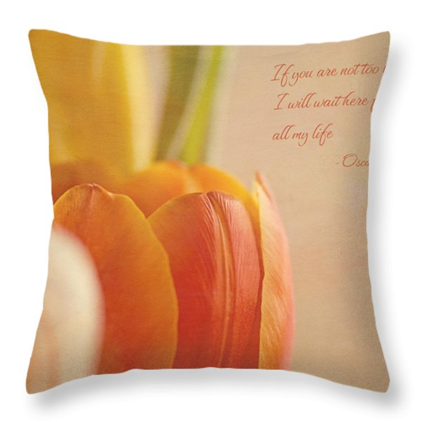 Waiting For You Throw Pillow by Lisa Knechtel