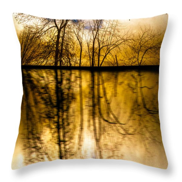 Walk Along The River Throw Pillow by Bob Orsillo