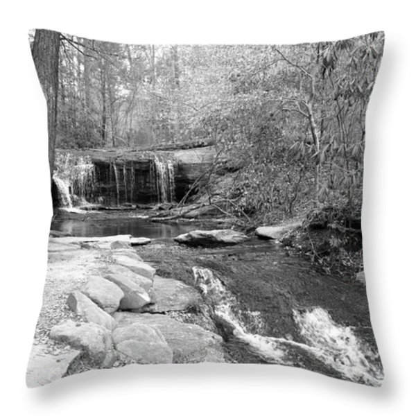 Walk To The Waterfall Throw Pillow by Carol Groenen