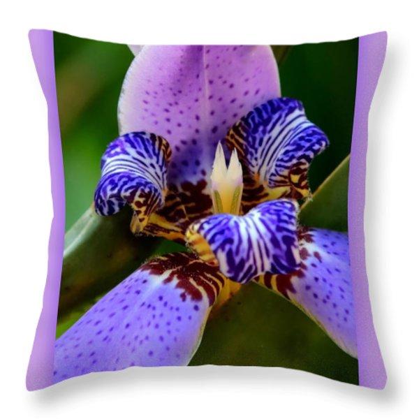 Walking Iris With Purple Border Throw Pillow by Carol Groenen