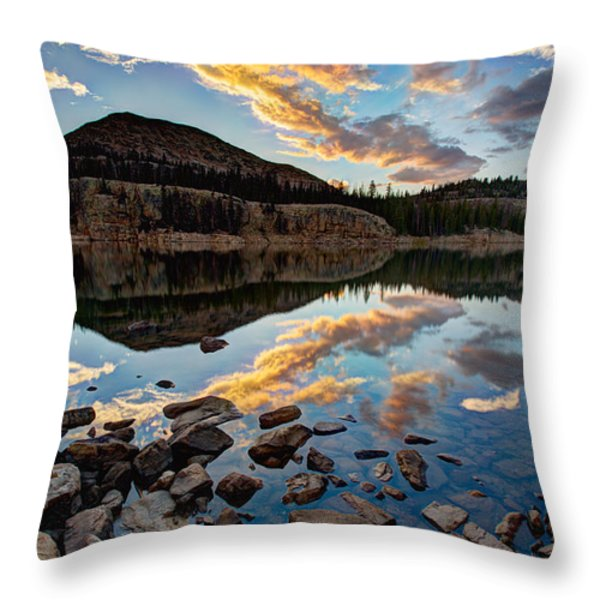 Wall Reflection Throw Pillow by Chad Dutson