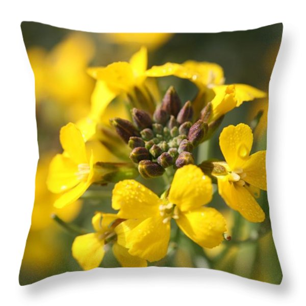 Wallflowers Throw Pillow by Mark Severn