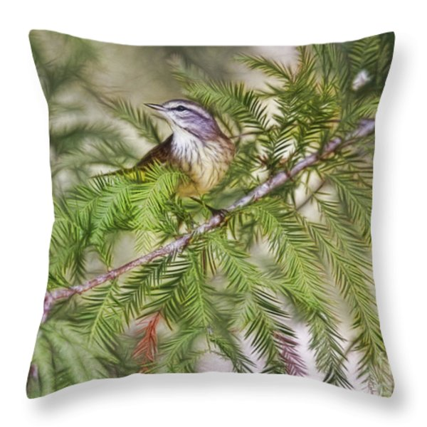 Warbler In The Cypress Throw Pillow by Deborah Benoit