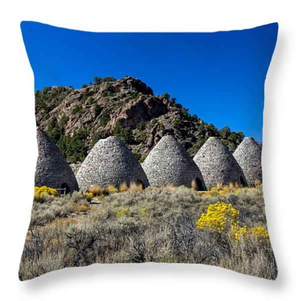 Wards Charcoal Ovens Throw Pillow by Robert Bales