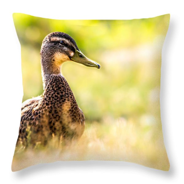 Warm Summer Morning And A Duck Throw Pillow by Bob Orsillo