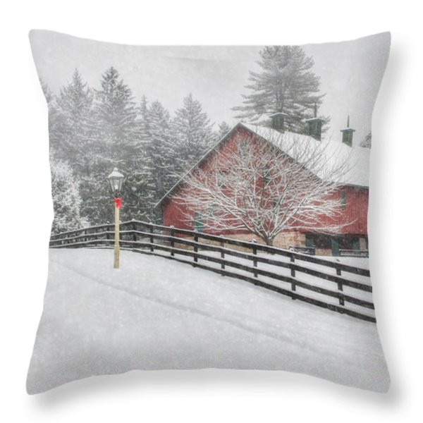 Warmest Holiday Wishes Throw Pillow by Lori Deiter